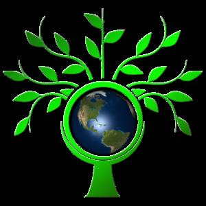 Pixabay Tree Earth